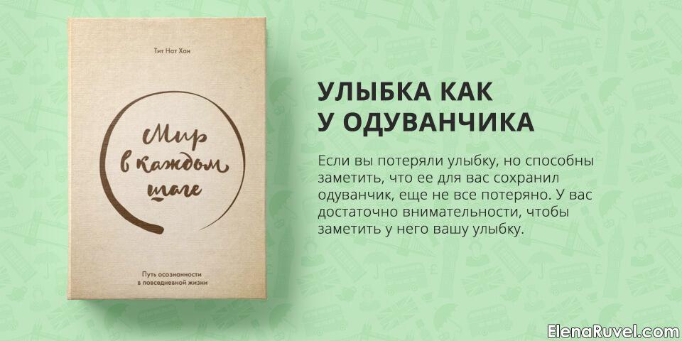 Мир в каждом шаге, Тит Нат Хан, обзор книги, книжный обзор