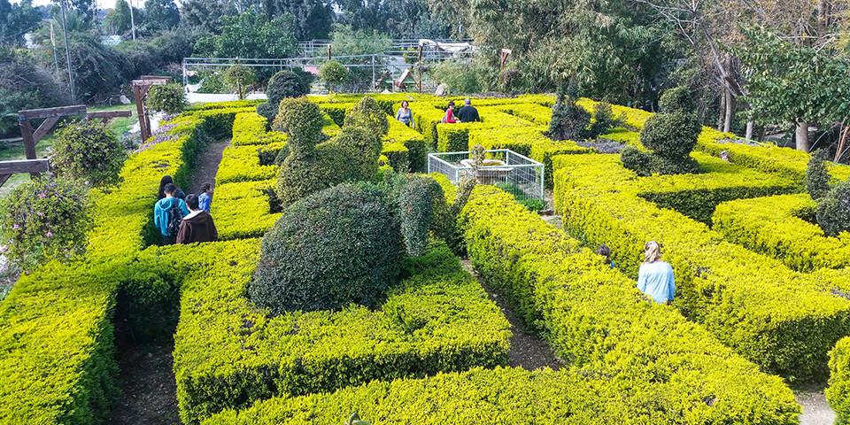 Лабиринт, парк Утопия, Израиль