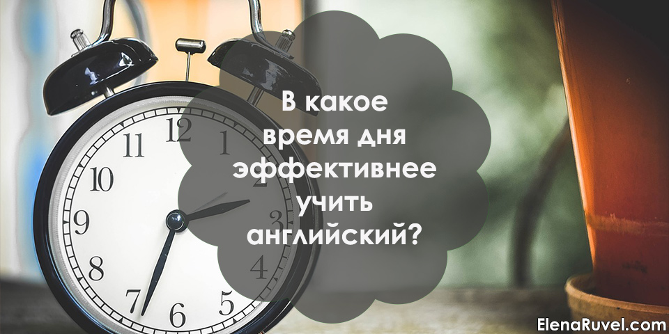 В какое время дня эффективнее учить английский?